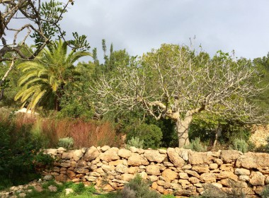 ikh.villas_ibiza-sestanyol-PHOTO-00000039